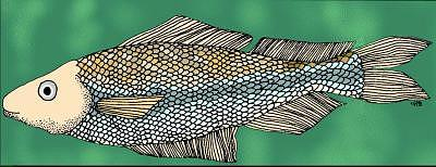 Fish Digital Art - Lynns Fish by Lynn Aranow