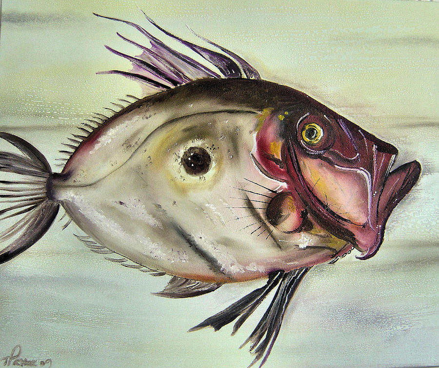 Fish Painting - M R Dory by Tracey-anne Pryke