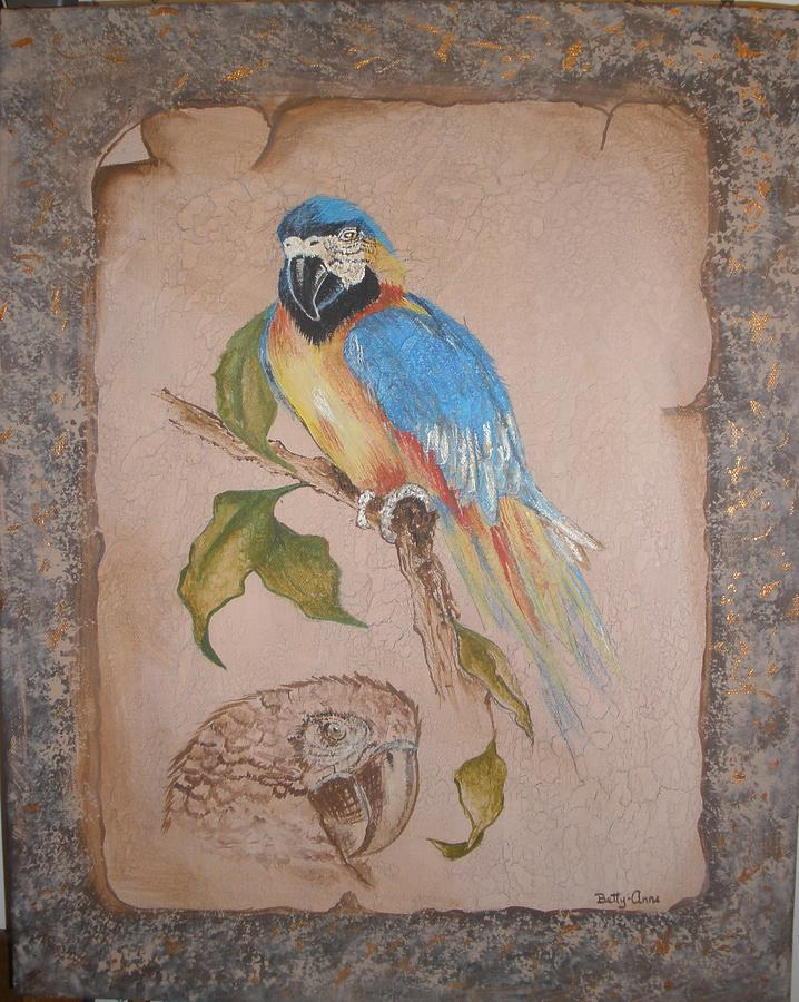 Birds Painting - Macaw by Betty-Anne McDonald