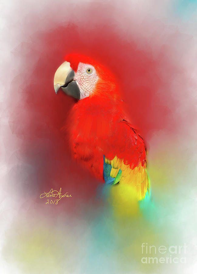 Macaw Digital Art - Macaw by Lena Auxier
