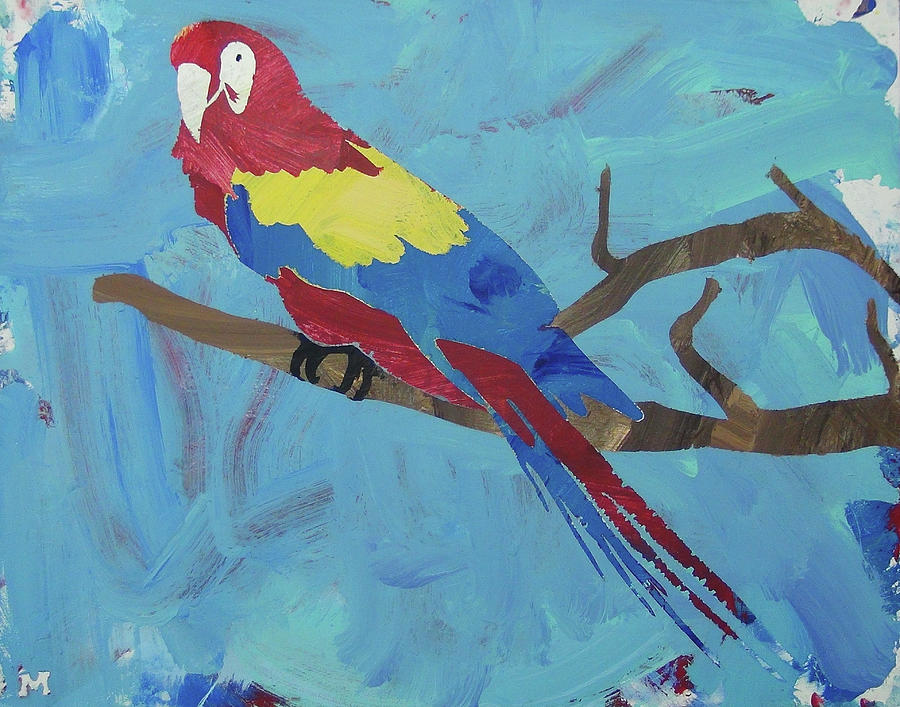 Macaw by Candace Shrope