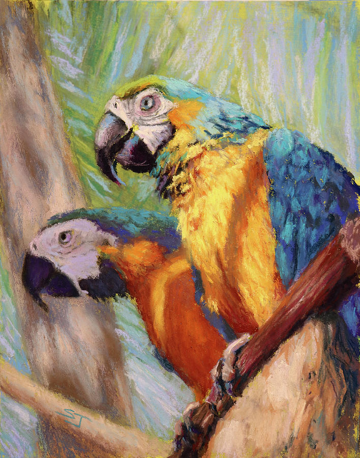 Parrots Painting - Macaws In The Sunshine by Susan Jenkins