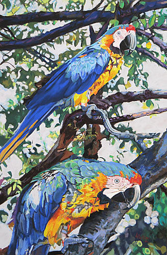 Macaws  Michael Allstead Painting by Michael Allstead