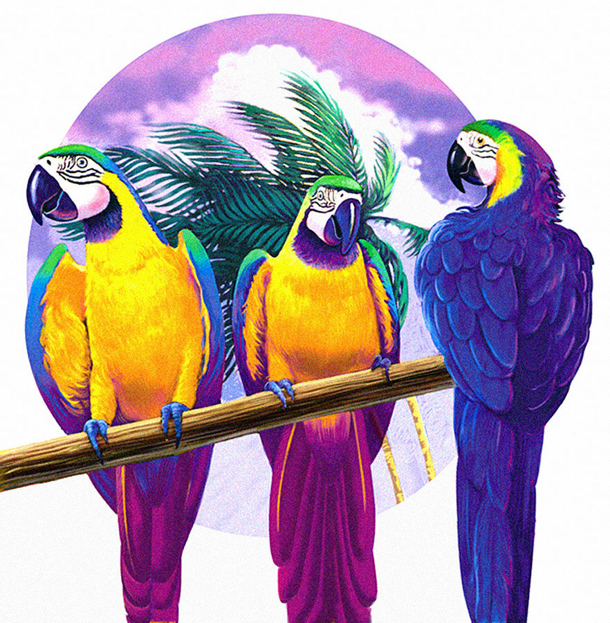 Macaws Pastel - Macaws by Valer Ian
