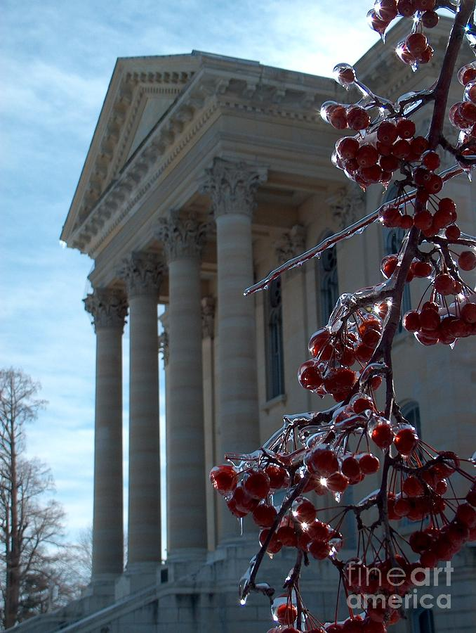 Illinois Photograph - Macoupin County Courthouse With Iced Crabapples by Denise   Hoff