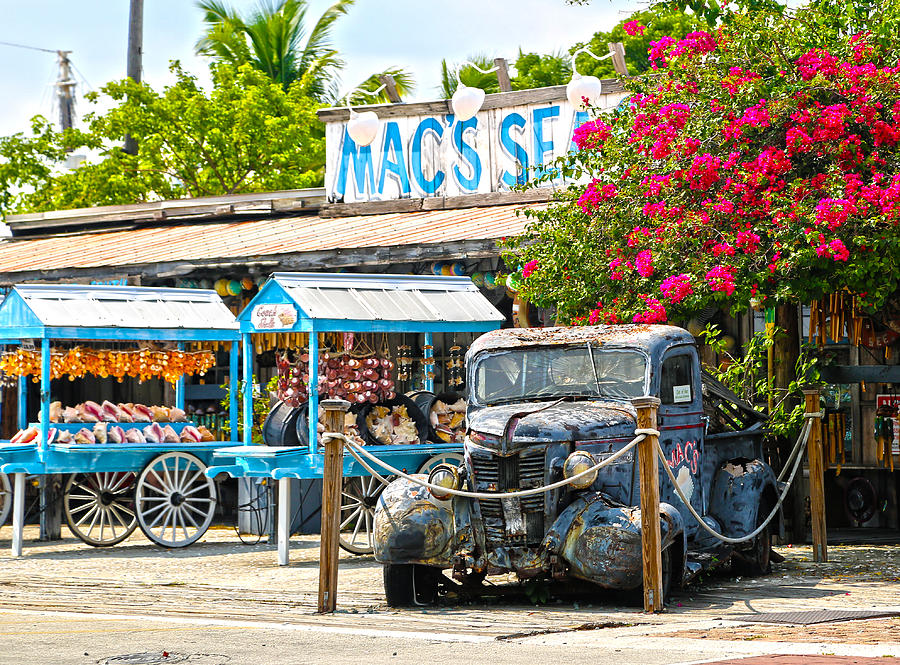 Key West Photograph - Macs Sea Garden II On Key West Florida by Lee Vanderwalker
