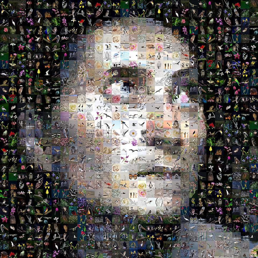 Gilberto Digital Art - Mad Woman by Gilberto Viciedo