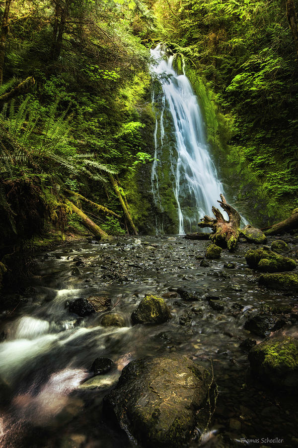 Madison Falls - An Elwha Sanctuary by Expressive Landscapes Nature Photography