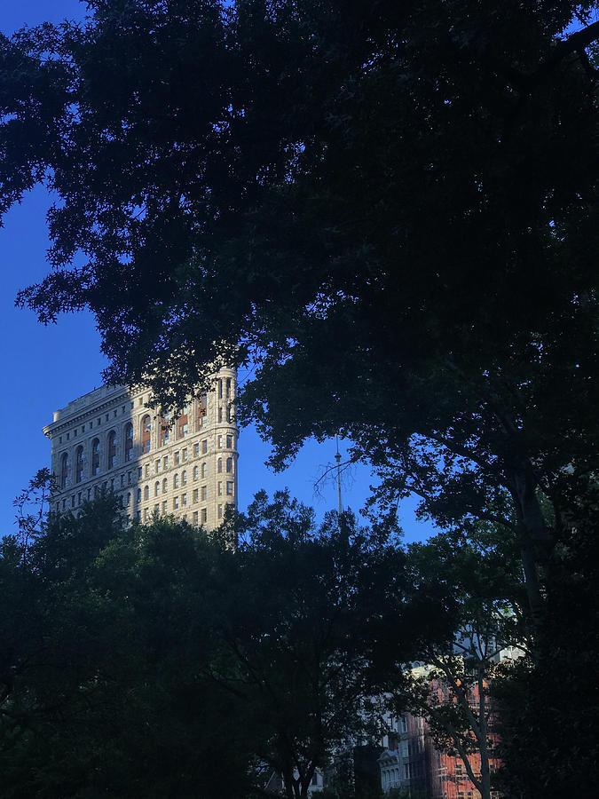 Citadel Photograph - Madison Square Park by Joseph Yarbrough