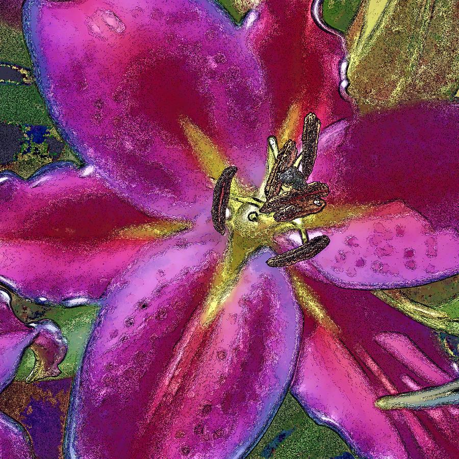 Magenta Flower by Paula Porterfield-Izzo