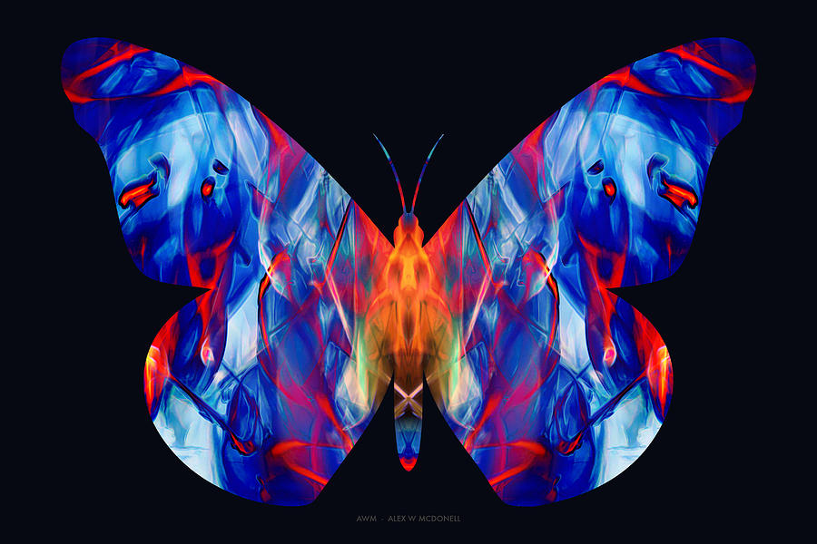 Magenta Morpho by Alex W McDonell