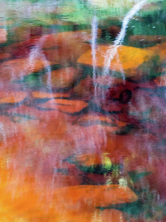 Water Photograph - Maggie by Simon Sephton