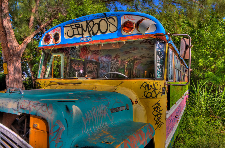Graffiti Photograph - Magic Bus by William Wetmore