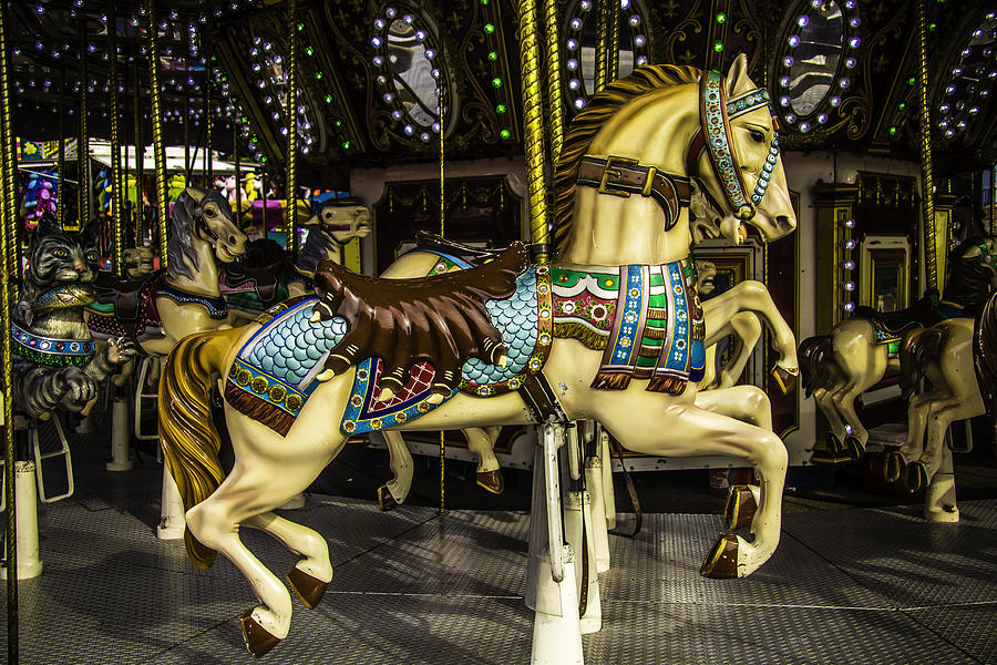 Horse Photograph - Magic Carrousel Horse Ride by Garry Gay
