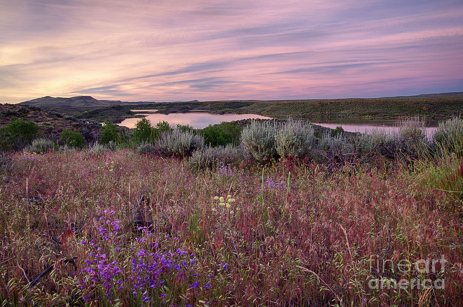 Fairfield Photograph - Magic Dawn by Idaho Scenic Images Linda Lantzy