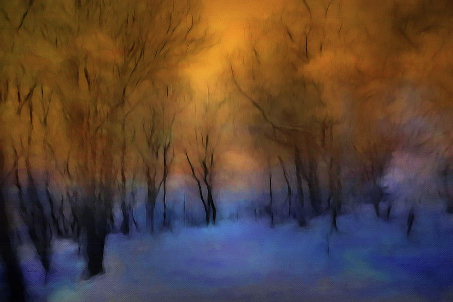 Magic Forest Photograph - Magic Forest by Andrea Kollo