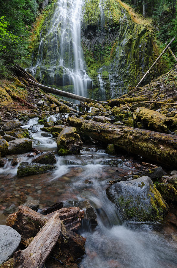 Waterfall Photograph - Magic In The Rainforest by Margaret Pitcher