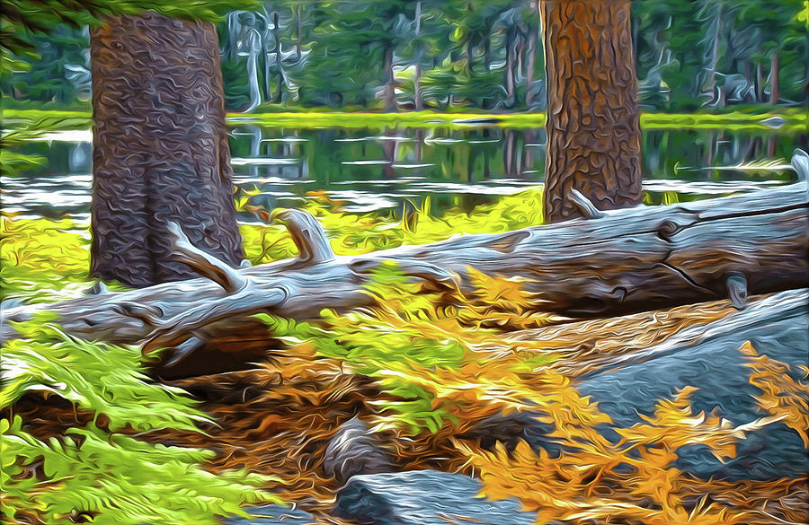 Magic Light Lake by Frank Lee Hawkins