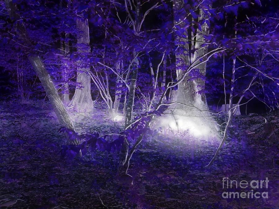 Abstract Landscapes Photograph - Magic Lives Within The Forest by Roxy Riou