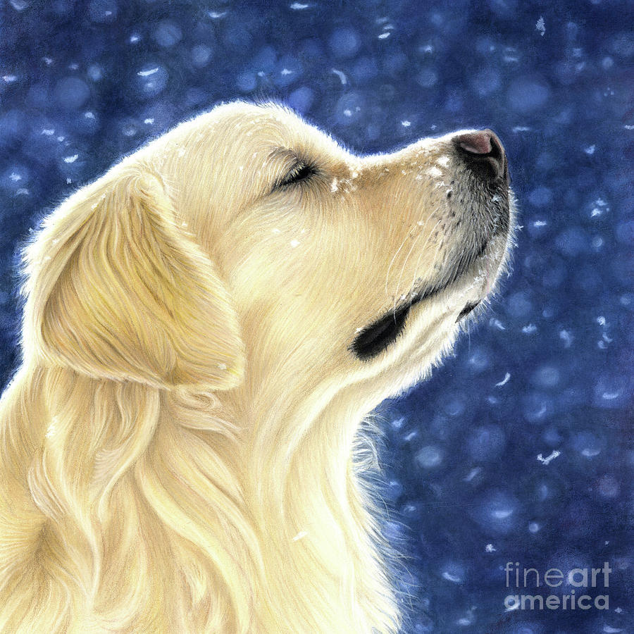 Golden Retriever Mixed Media - Magic Moment by Donna Mulley