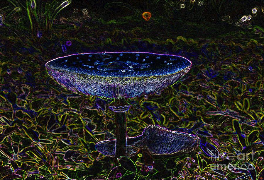 Artwork Painting - Magic Mushroom by David Lee Thompson