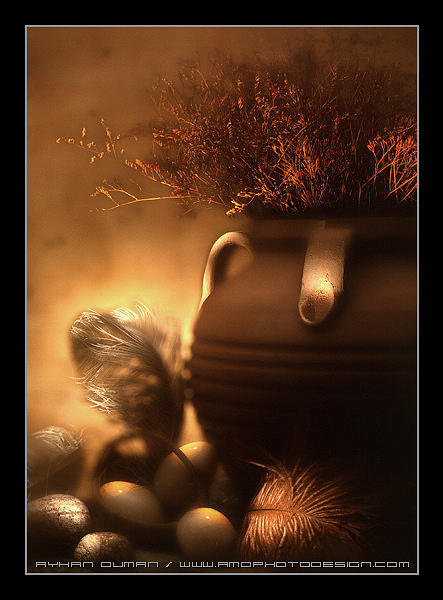 Nature Photograph - Magic Pot by Ayhan Duman