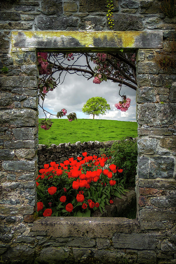 Ireland Photograph - Magical County Clare Countryside by James Truett