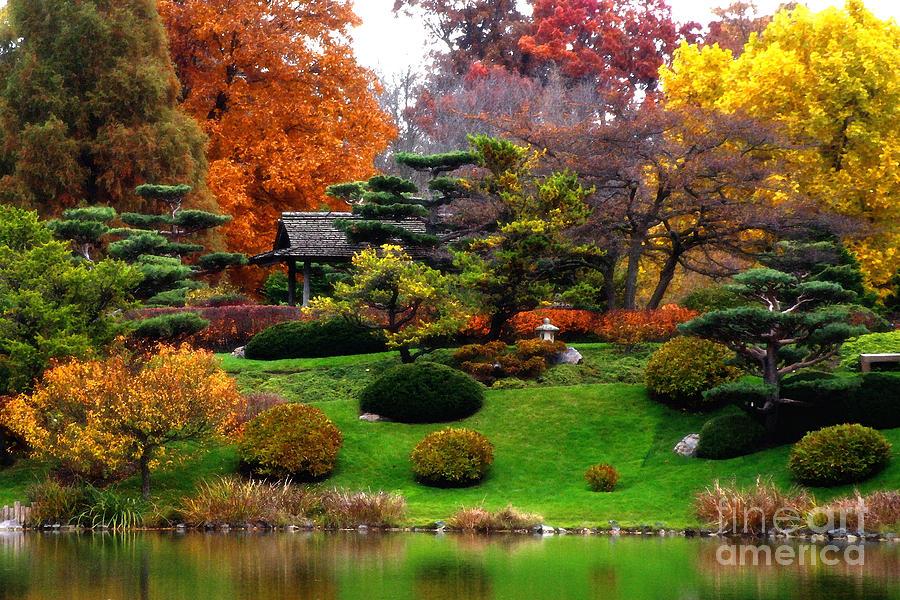 Illinois Photograph   Magical Fall Colors At Chicago Botanic Garden By Anna  Sheradon