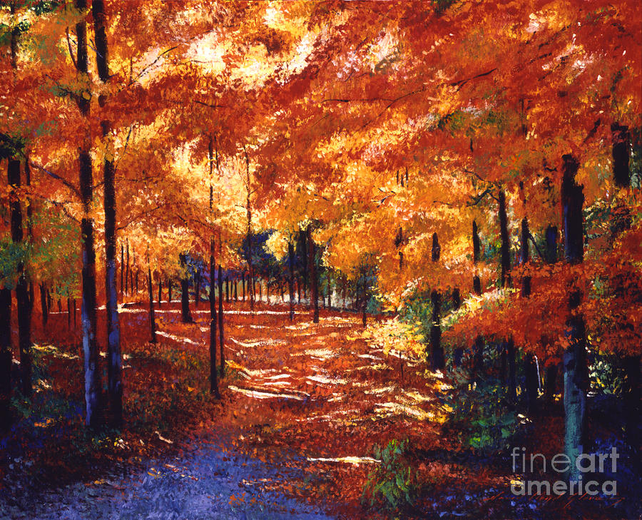 Autumn Painting - Magical Forest by David Lloyd Glover