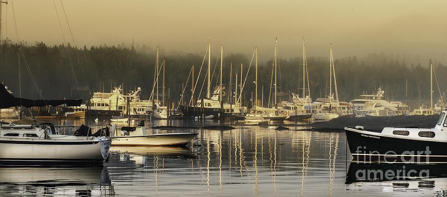 Maine Photograph - Magical Light Of Mt Desert Island by T-S Fine Art Landscape Photography
