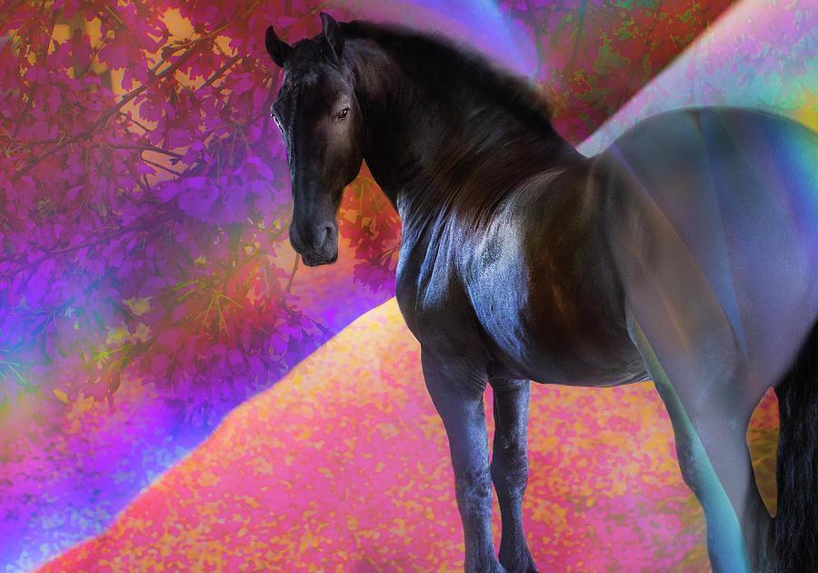 Blossoms Digital Art - Magical Monte by Annie Omens