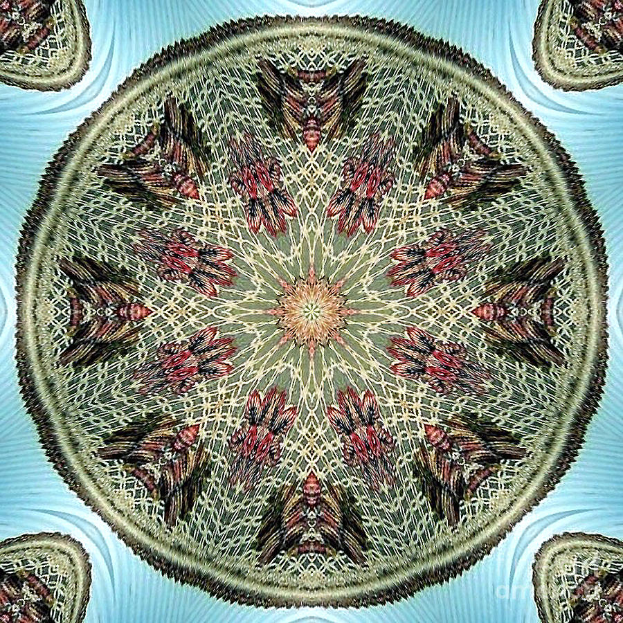 Magical Mosaic - Shamanic Power Circle 2