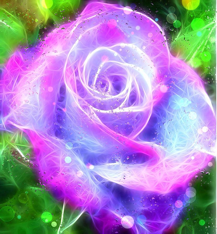 Flora And Fauna Digital Art - Rose Flower Ultraviolet Magenta Blue by Susanna Shaposhnikova