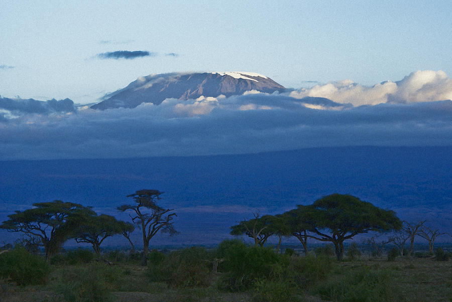 Africa Photograph - Magnificent Kilimanjaro by Michele Burgess