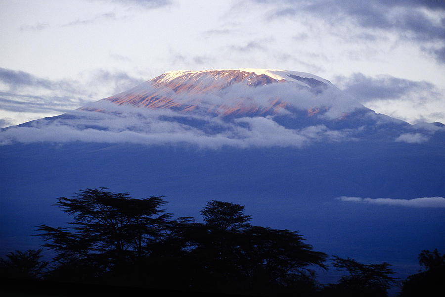 Africa Photograph - Magnificent Mount Kilimanjaro by Michele Burgess