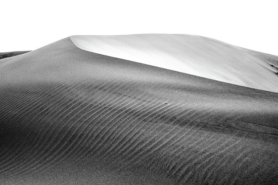 Arid Photograph - Magnificent Sandy Waves On Dunes At Sunny Day by Oleg Yermolov
