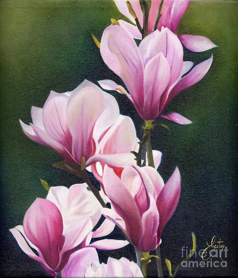 Magnolia Celebration I Painting By Daniela Easter