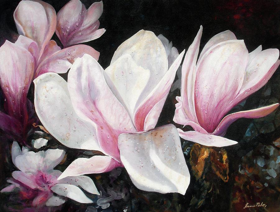 Magnolia Painting By Franco Puliti
