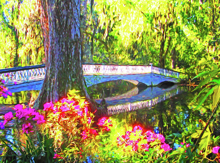 South Carolina Mixed Media - Magnolia Gardens Bridge by Dennis Cox Photo Explorer