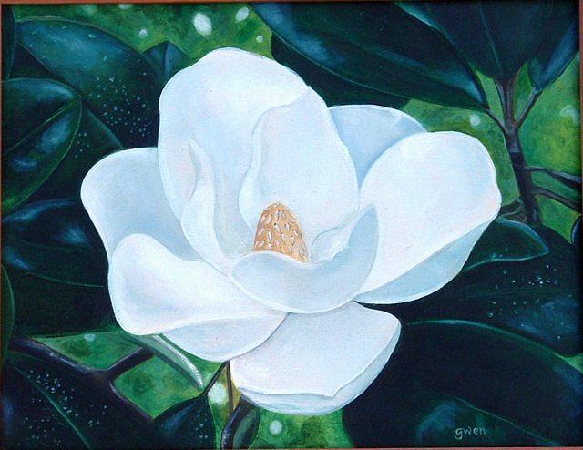 Magnolia Painting - Magnolia by Gwendolyn Frazier