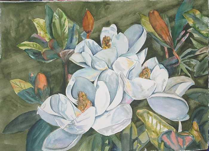 Floral Painting - Magnolias five by Diane Ziemski
