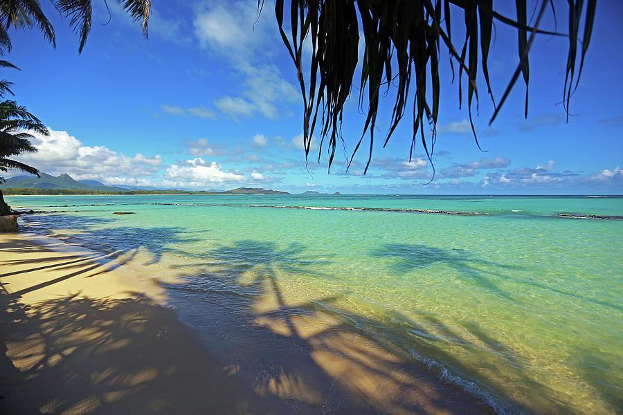 Magnum Pi Photograph - Magnums Beach by Ty Helbach