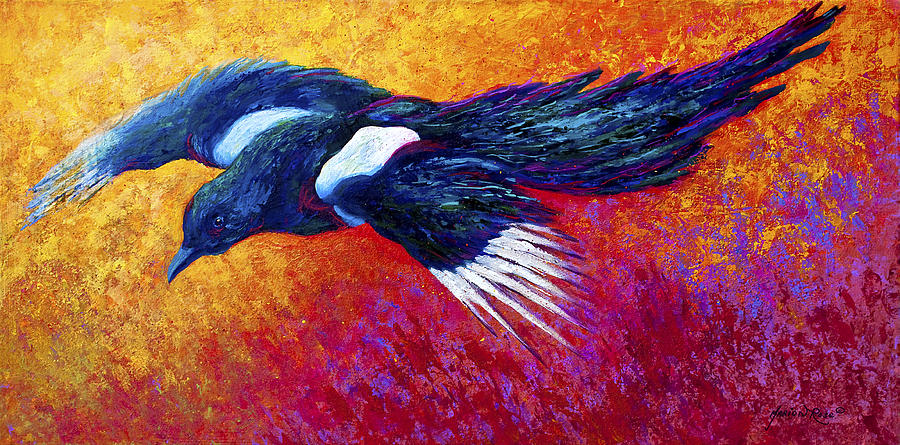 Magpie In Flight Painting By Marion Rose