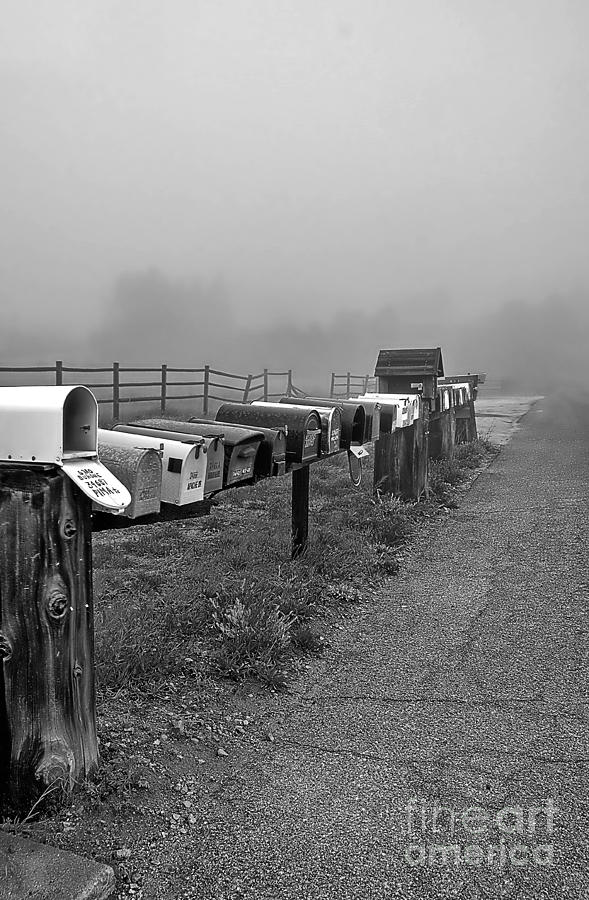 Mailboxes in the Mist by Alex Morales