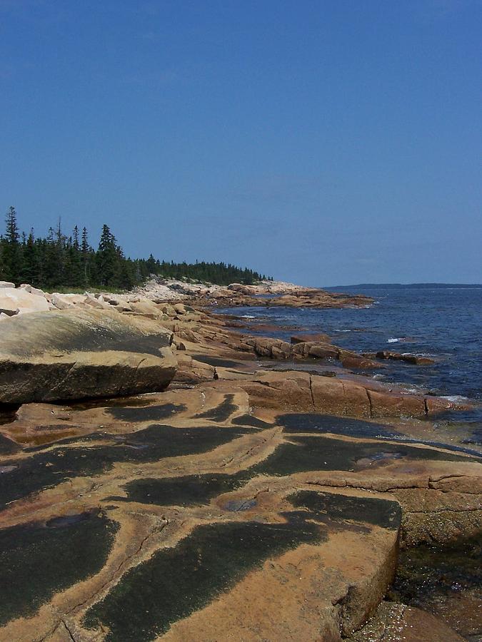 Maine Photograph - Maine Coast by Lisa Kane