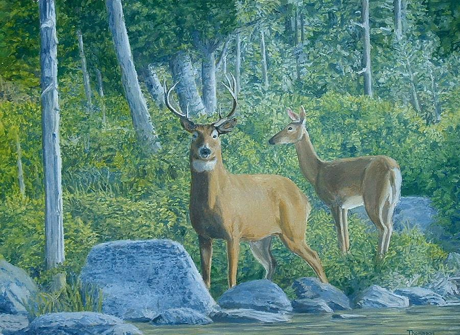 Wildlife Painting - Maine Deer by Lee Thomason