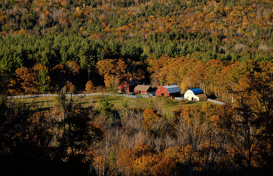 Maine Photograph - Maine Fall Colors by Gary Cloud