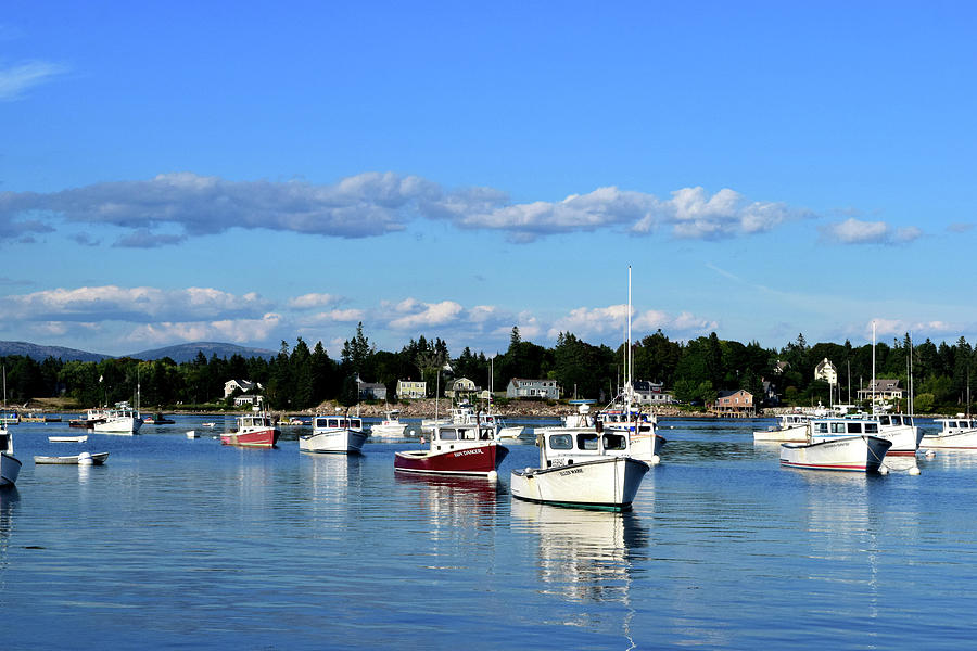 Maine Harbor No. 4-1 by Sandy Taylor