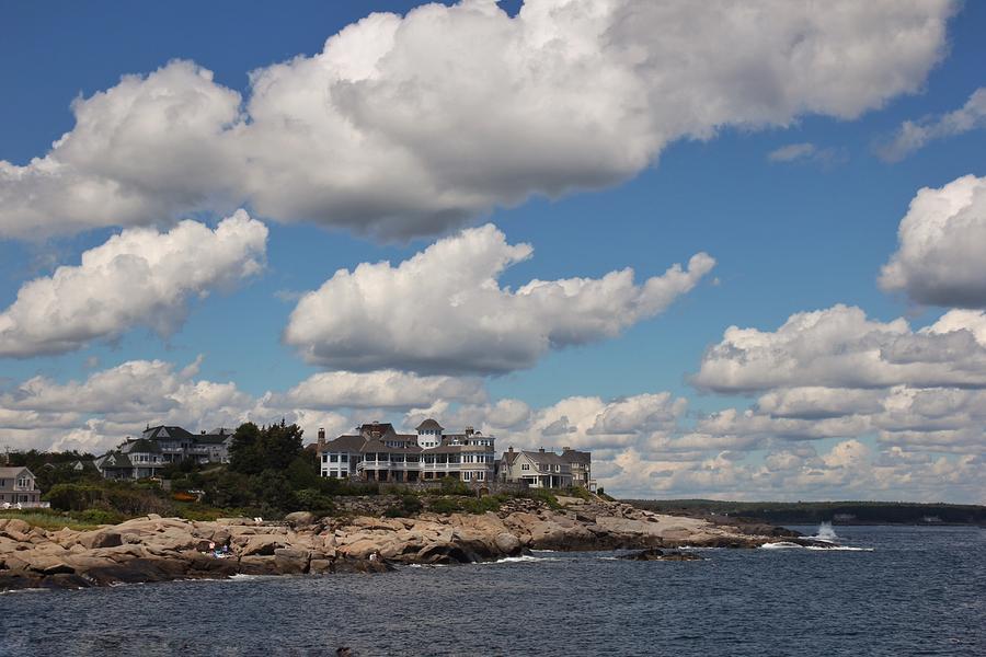 Maine landscape by Luisa Azzolini