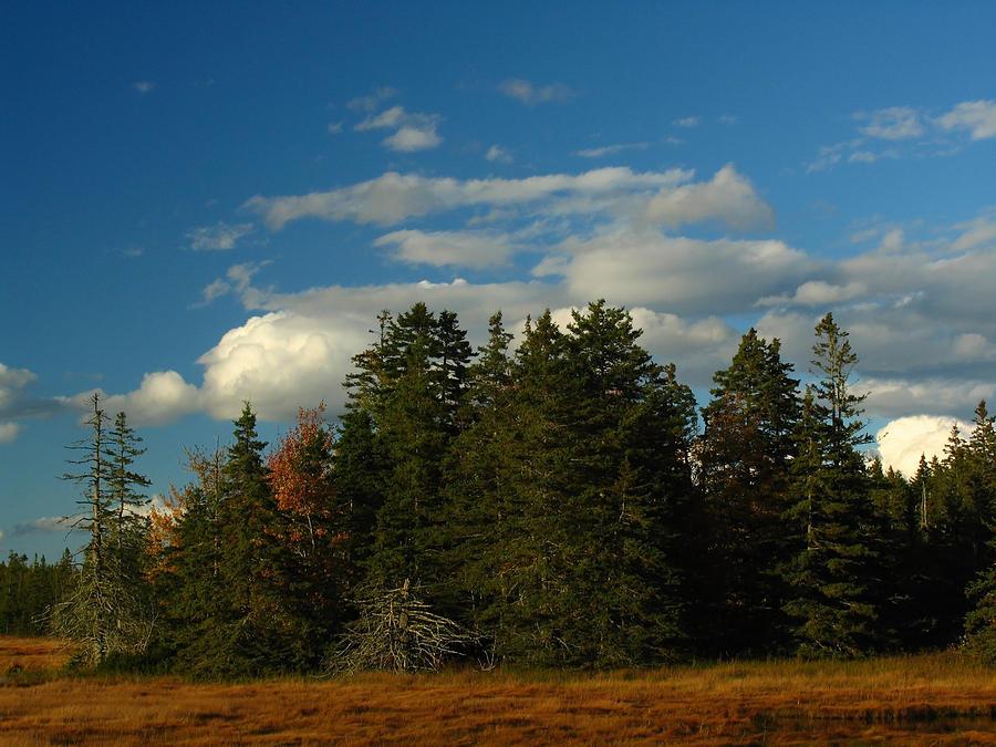 Landscape Photograph - Maine Landscape Photography by Juergen Roth